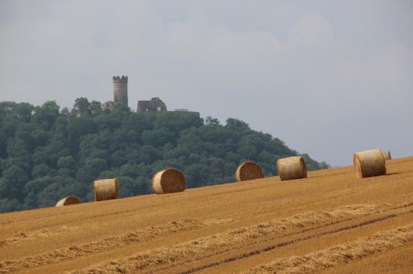 Castle Spotting2