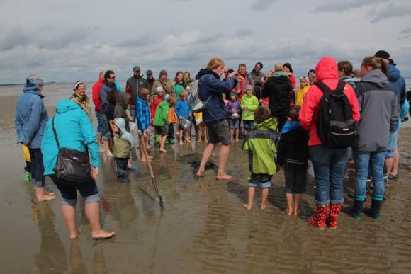 Mudflats Tour1