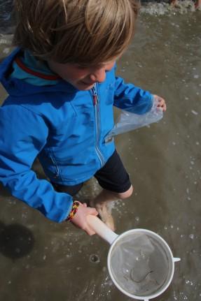Sieve Fishing